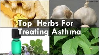 Herbs For Treating Asthma