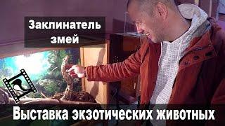 Выставка экзотических животных/Гладим рептилий