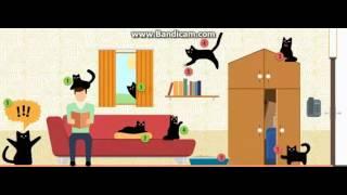 Плюсы и минусы кошки в доме