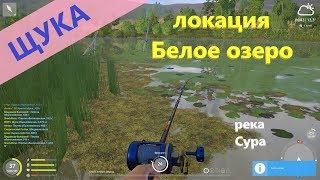 Русская рыбалка 4 река Сура Щука в пруду
