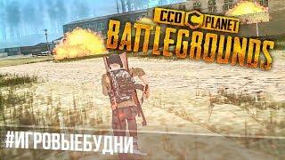 CCD Battlegrounds // Одинокий волк #ИГРОВЫЕБУДНИ