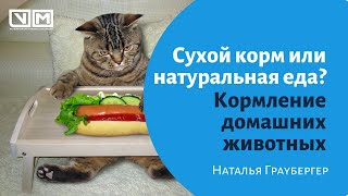Кормление домашних животных. Сухой корм или натуральная еда