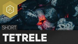 Kohlenstoffgruppe/Tetrele - 4. Hauptgruppe im Periodensystem #TheSimpleShort