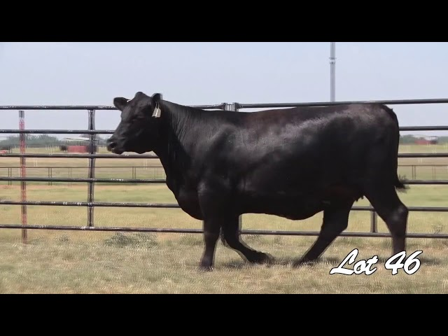 Pollard Farms Lot 46