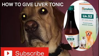 HOW TO GIVE LIVER TONIC TO A DOG/ HEALTH & FITNESS