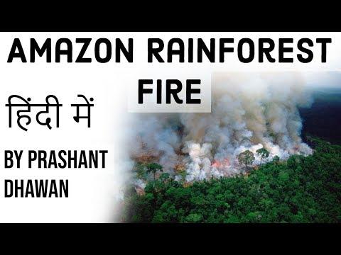 Amazon Rainforest Fire