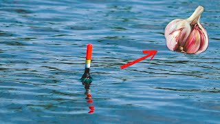 КРУПНЫЙ КАРАСЬ Рыбалка на удочку ПОПЛАВОК Рыбалка в Казахстане