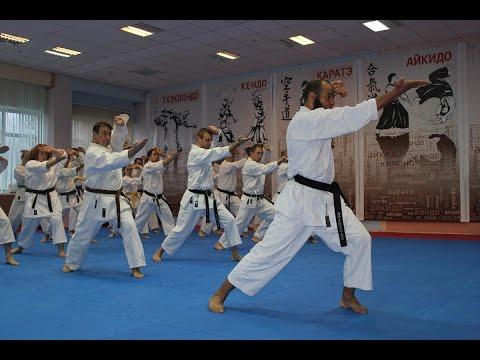 "Defenders of Moscow Karate Festival 2015  - Фестиваль ""Защитники Москвы"""