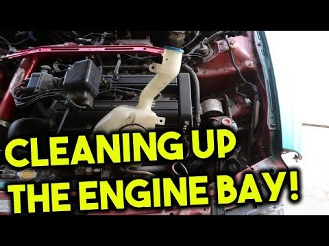 Repeat Removing Cruise Control and Windshield Washer