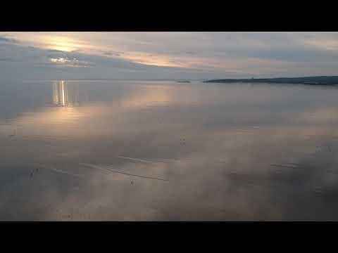 Fleet Bay Sunset, Oystercatchers Take Flight.