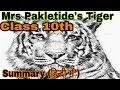 Mrs Pakletide's Tiger FULL( हिन्दी में) explained ||cbse class 10