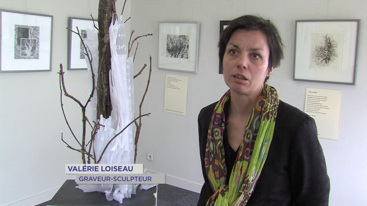 Voisins-le-Bretonneux : la nature gravée de Valérie Loiseau