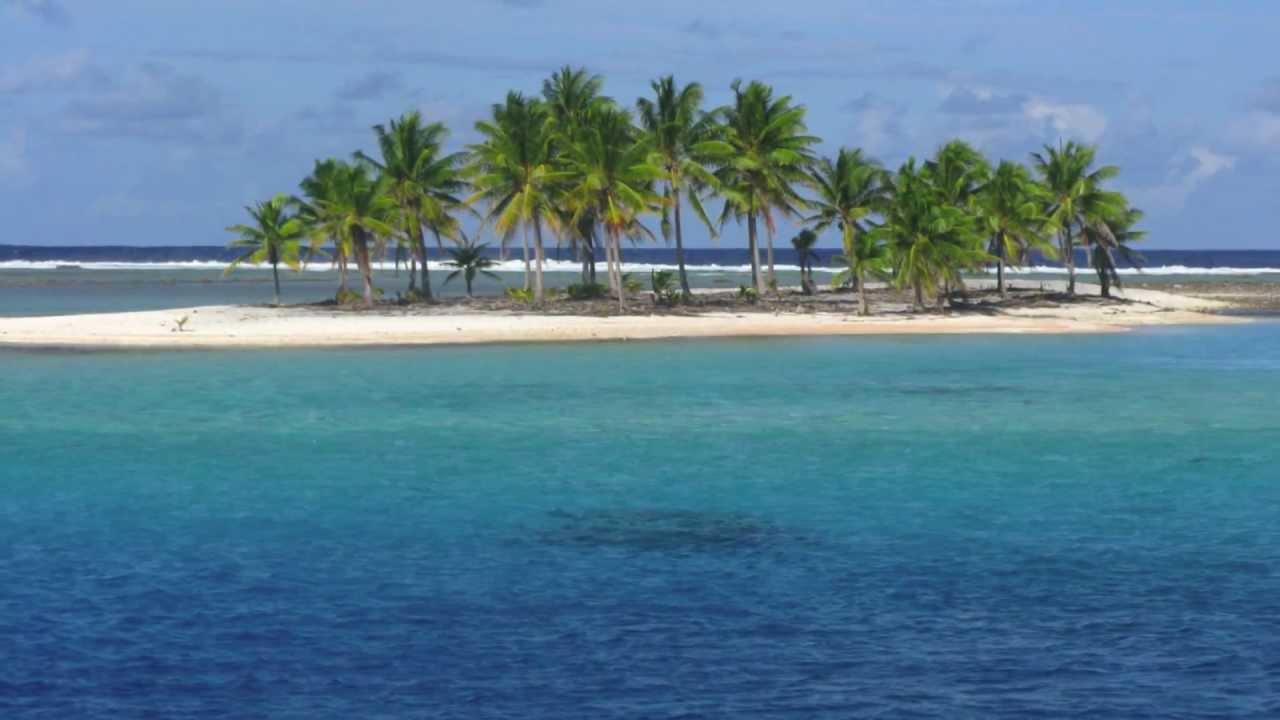 Pacific islander vs thebaddcamguy