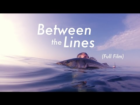 'BETWEEN THE LINES' FULL FILM | Fly Fishing For HUGE Striped Bass