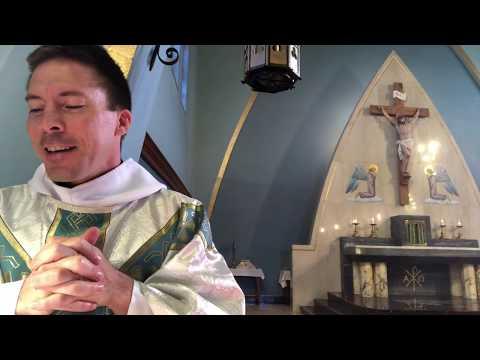 St. Faustina Retreat, Talk # 1 - Fr. Mark Goring, CC