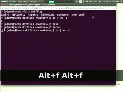 The command line - a versitile, future-proof computing environment
