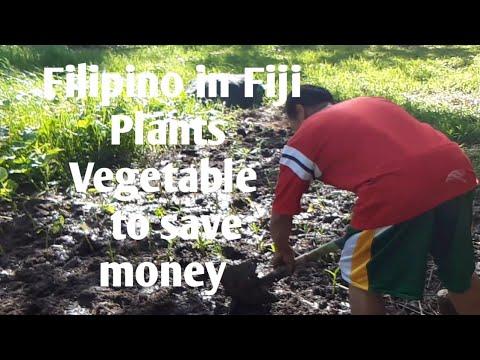 Filipino in fiji real stories part 1.