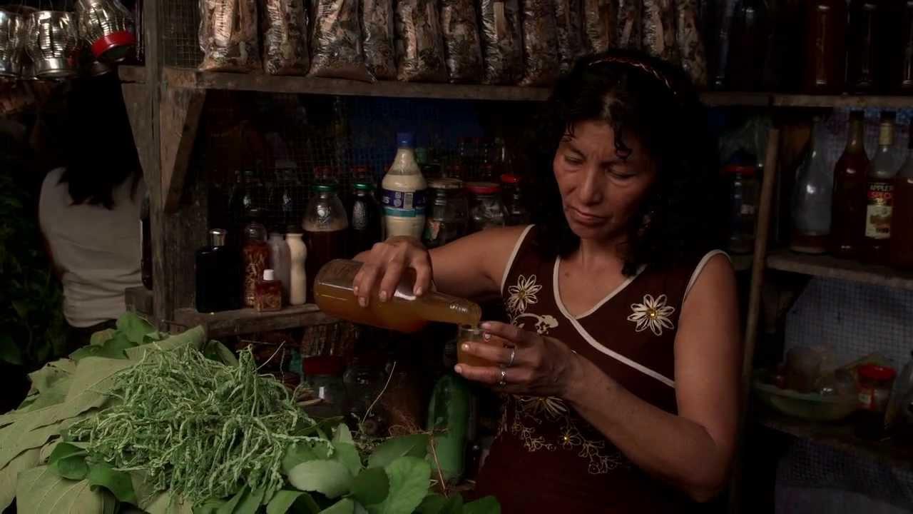 The Ayahuasca Diaries