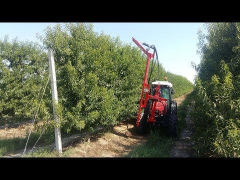 SANIDAS SKR, Κορυφολόγηση Δένδρων - Orchard Trimmer - Машина за контурно рязане на овошни дървета