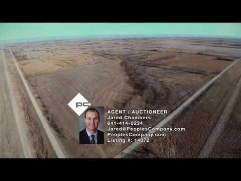 Wayne County Land Auction - 80 Acres M/L - Sells Absolute!