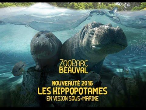 [Vlog] Ma visite au zoo de Beauval 2016 [2/2]