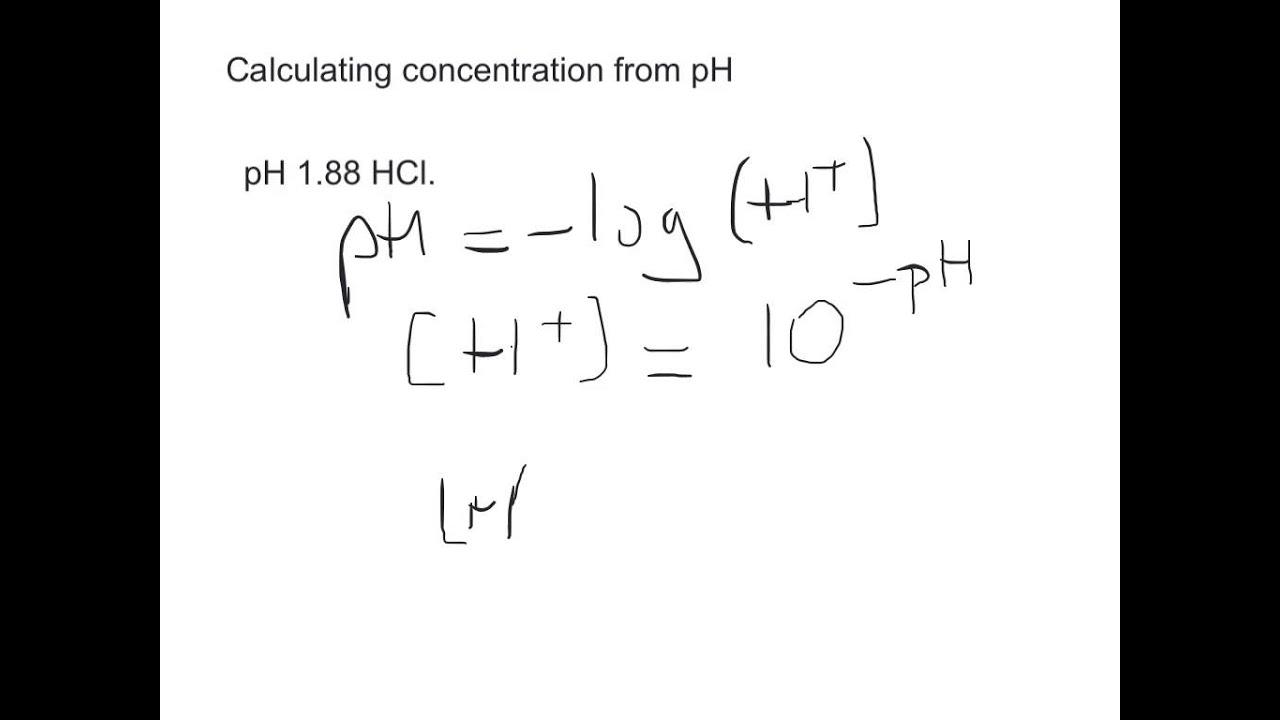 worksheet. Ph Calculations Worksheet. Grass Fedjp ...