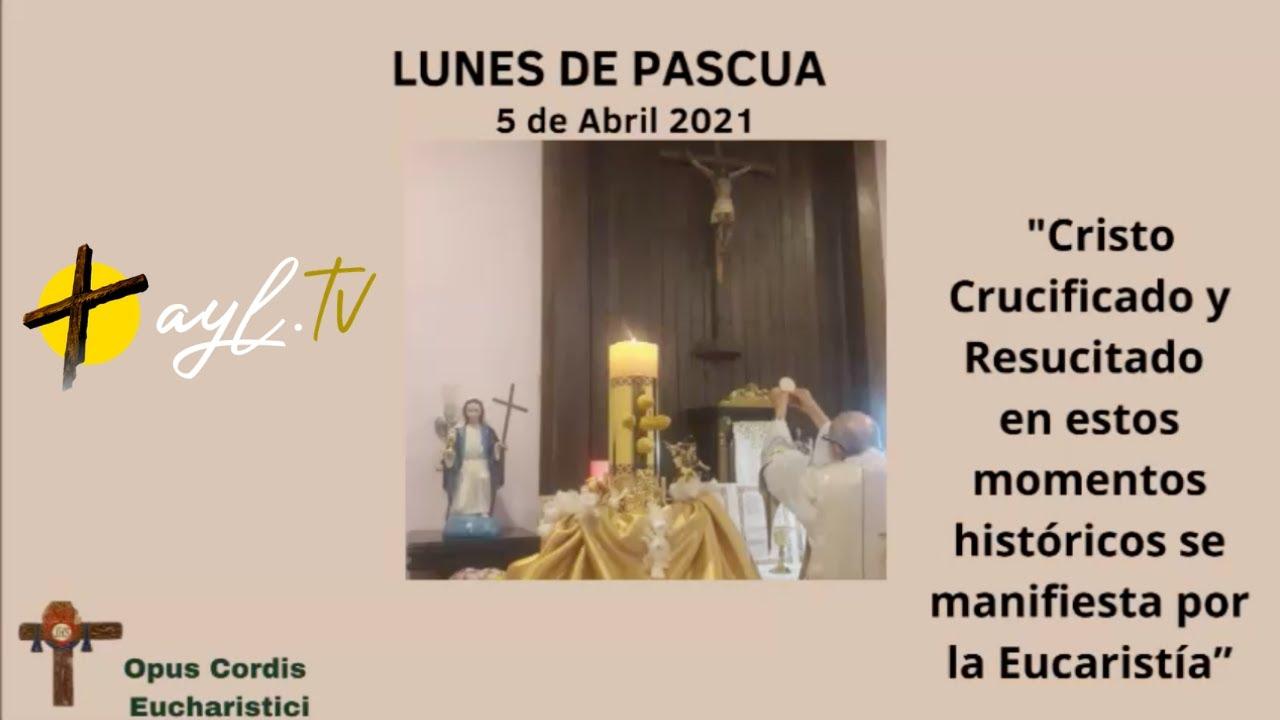 LUNES DE PASCUA | HOMILIA |  P. Tamayo | Adoración y Liberación