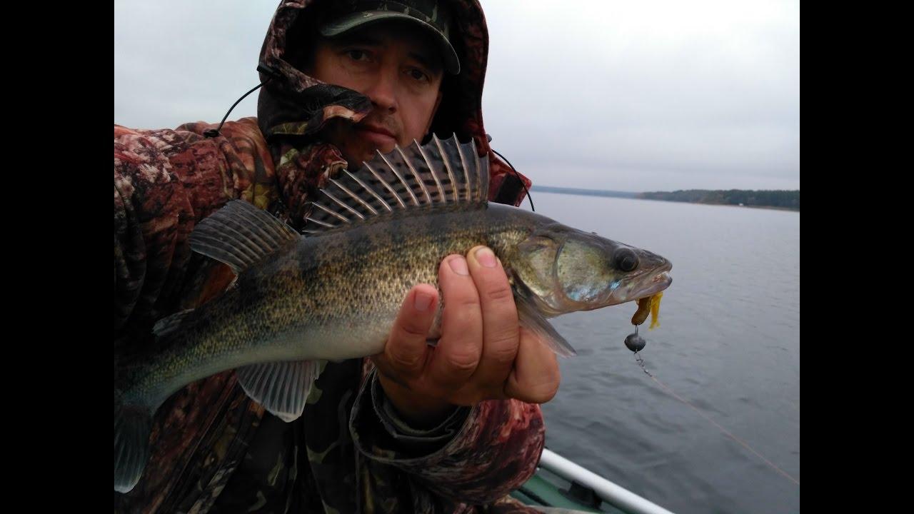 Рыбалка: ловля окуня и судака