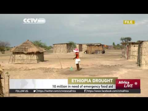 10 million Ethiopians in need of emergency food aid