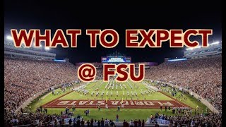 WHAT TO EXPECT AT FSU