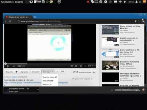 Youtube Video downloader Chromium, Ubuntu