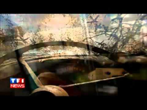 Ricky Skaggs, Earl Scruggs, James Cotton And Marc & Ann Savoy - American Roots Music Theme.flv