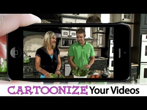 How to CARTOONIZE Your Videos ...