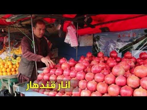 هر کس پشت افغانستان و انار اش دیق شده این ویدیو را ببینید.