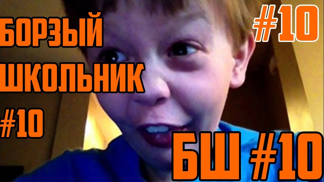 Борзый Школьник №10