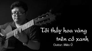 Độc tấu guitar| Tôi thấy hoa vàng trên cỏ xanh | Mèo Ú Guitar