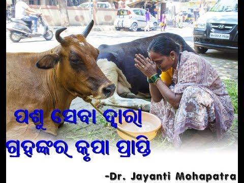 Pashu Seva- Dr. Jayanti Mohapatra