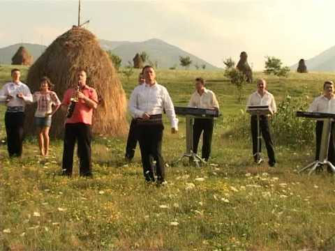 Puiu Codreanu Faina-i viata la romani