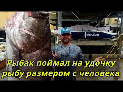 Рыбак поймал на удочку 159 килограммовую рыбу размером с человека