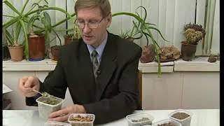 Как составить сбор для похудения. Травник Гордеев М.В.