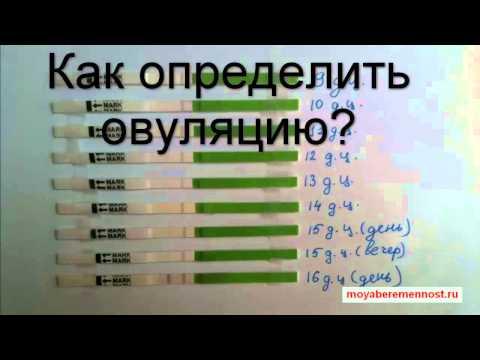 Как определить овуляцию?