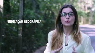 HF em Vídeo: Hortifrutis com