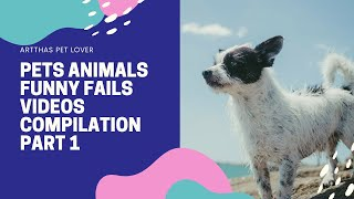 Pets Animals Funny Fails Videos Compilation Part 1