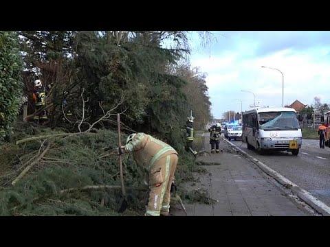 Tempestade Friederike faz sete mortos no centro da Europa
