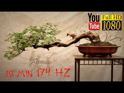 HD  🌅 174 Hz 🌅 Chi / Qi Energy 🌅  Reiki, Yoga, Qigong, Zen Music  🌅 Relax Day and Night