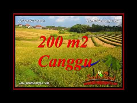 FOR SALE Affordable LAND IN CANGGU BALI TJCG228