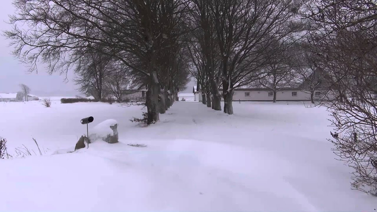 Donner Pass Snow >> Heavy snowfall in Denmark Dec 9 2012 - YouTube