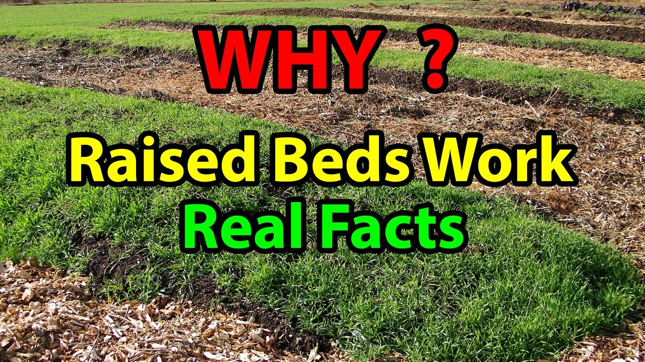 why raised bed gardening works faster building beds for organic vegetable for beginners 101. Black Bedroom Furniture Sets. Home Design Ideas
