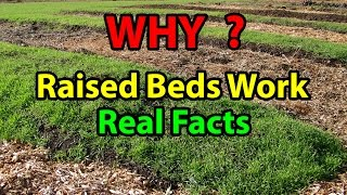 WHY Raised Bed Gardening Works Faster - Building raised garden beds 101