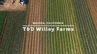 Tom Willey of T&D Willey Farms